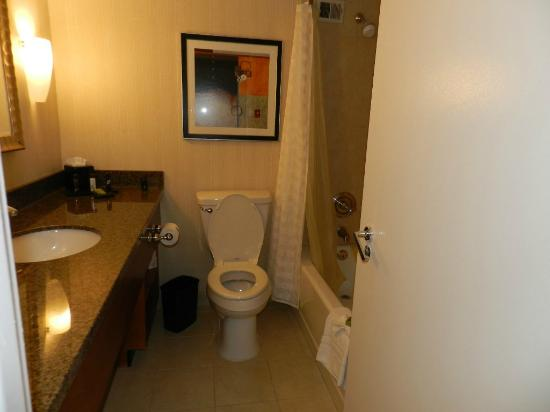 Embassy Suites by Hilton Denver - Tech Center: Bathroom
