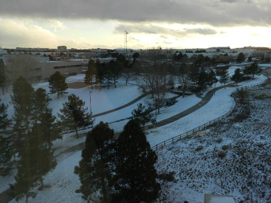 Embassy Suites by Hilton Denver - Tech Center: View from Room