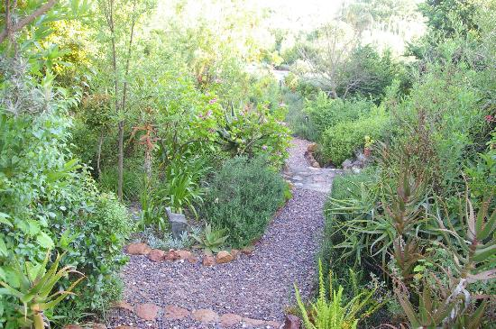 Augusta de Mist Country House: Path leading to pool and house from Arum Lily Cottage