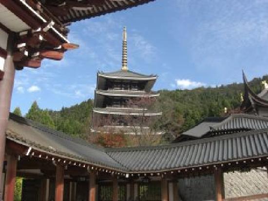 Echizen Daibutsu : 日本一高い、、、はずの五重塔
