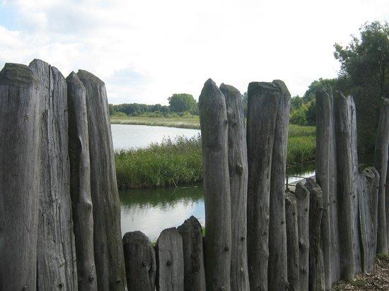 Muzeum Archeologiczne w Biskupinie: Widok na jezioro