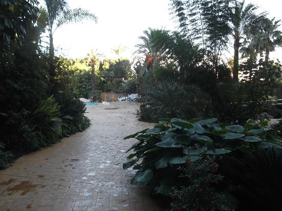 Albir Playa Hotel & Spa: JARDINES Y ZONA EJERCICIO