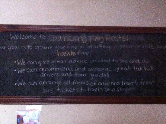The Dancing Frog Hostel : Filosofia dell'accoglienza