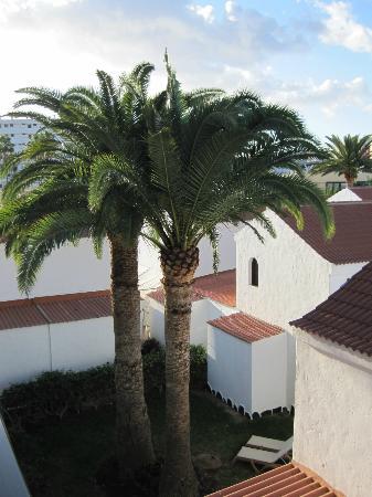 Hotel Parquemar: Grounds
