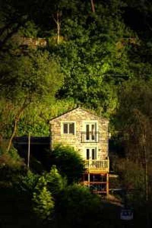 Spring Wood Studios