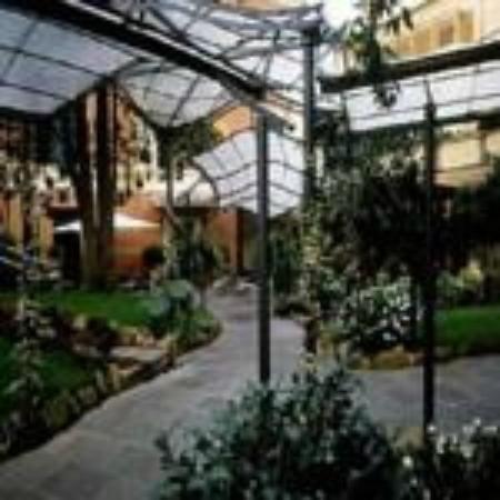 Hotel Villa San Pio: GIARDINO