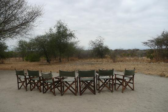 Whistling Thorn Tented Camp: Campfire area