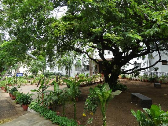 YWCA Guest House: front garden