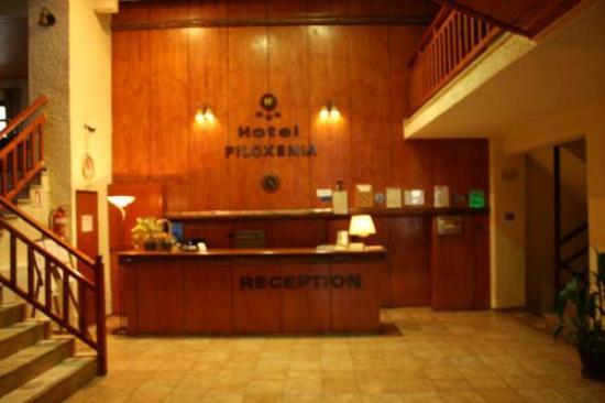 Filoxenia Hotel & Spa: Υποδοχή