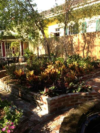 The New Orleans Jazz Quarters: the garden we ate breakfast next to