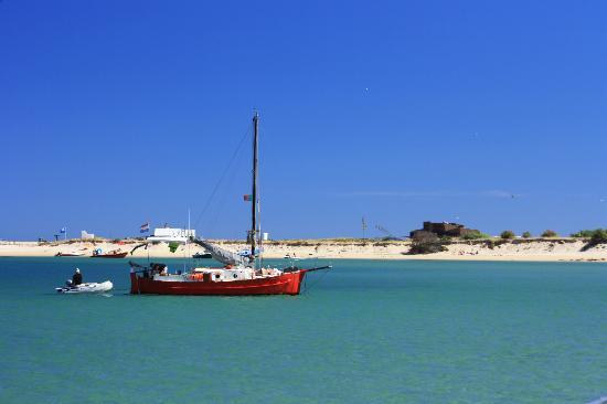 Animaris Ilha Deserta Boat Tours
