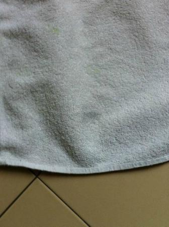 Hotel Bristol Republique : stained towels