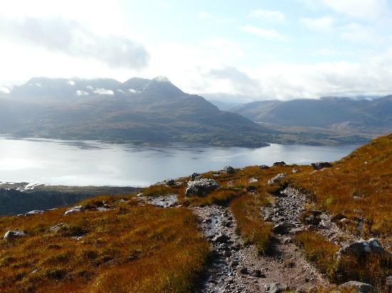 Glen Torridon: About 45 mins up lower slopes of B.Alligin