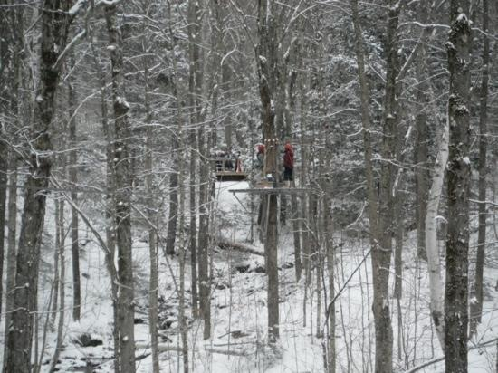 ArborTrek Canopy Adventures: first snow of the season