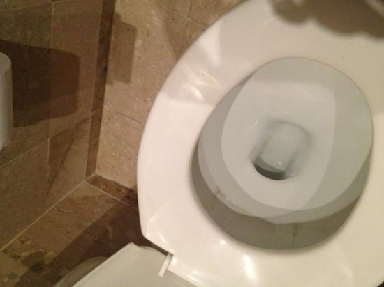 Paradisus Punta Cana Resort: dirty toilet when we checked in