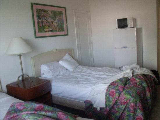 Alamo: Chambre, gdr frigo et mico onde