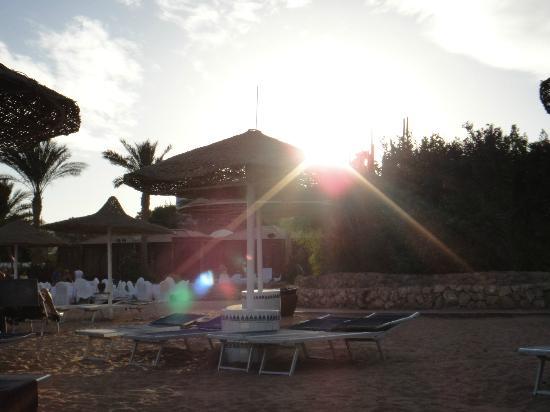 Domina Coral Bay Oasis: Солнце...