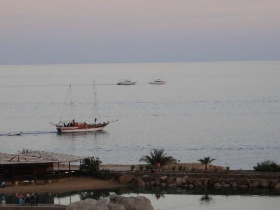 Domina Coral Bay Oasis: Яхта на море)
