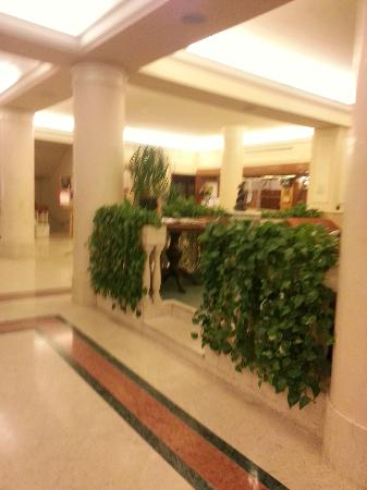 Grand Hotel Adriatico: Atrio