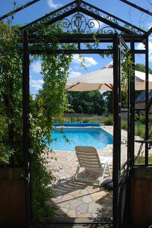 La piscine the pool photo de ch teau du grand val for Piscine combourg
