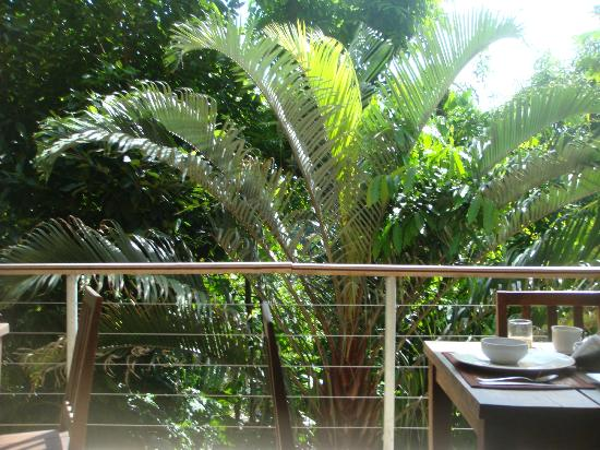 Gavea Tropical Boutique Hotel: View from breakfast terrace