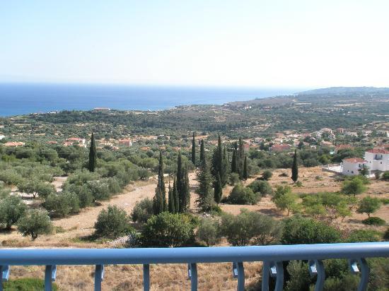Diana Studios: View