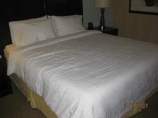 Hilton Garden Inn Washington DC / Bethesda : King sized bed