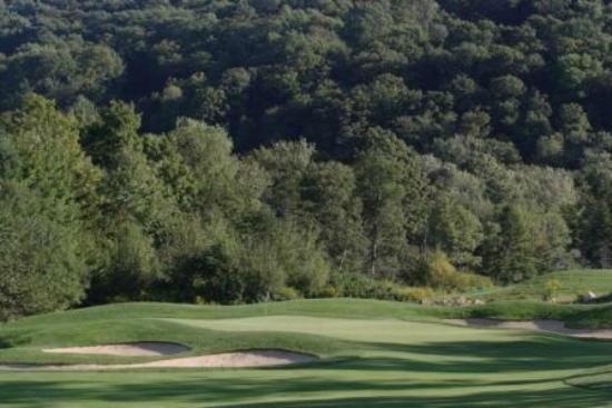Green Mountain National Golf Course: Hole #8 Green