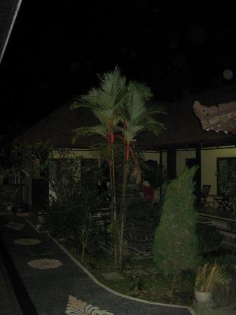 Kubu Kauh Beach Inn Legian照片