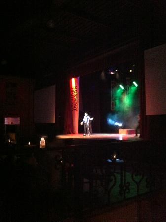 Sandos Playacar Beach Resort: Michael Jackson Show