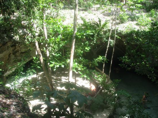 Casa Amor Del Sol: Grand Cenote 10 minute drive