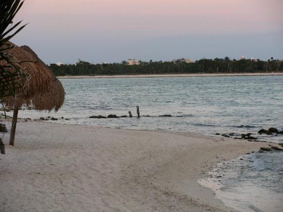 Casa Amor Del Sol: Walking distance to Casa Cenote
