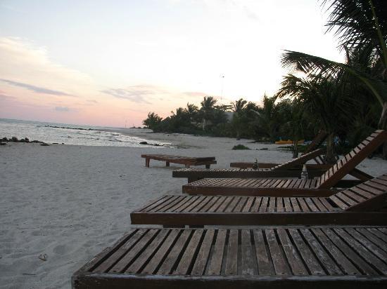Casa Amor Del Sol: Beach area