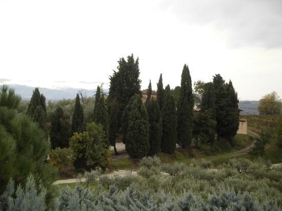 Agriturismo La Ginestrella: Panorama dalla camera