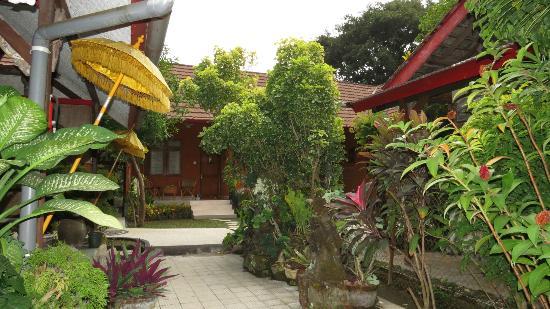 Hotel Baruna: garden