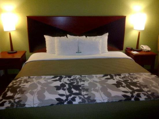 Sleep Inn and Suites Dothan: Standard King Room