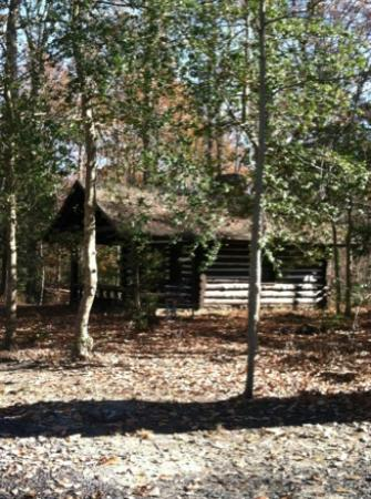 Westmoreland State Park: Side of our cabin, Cabin 4