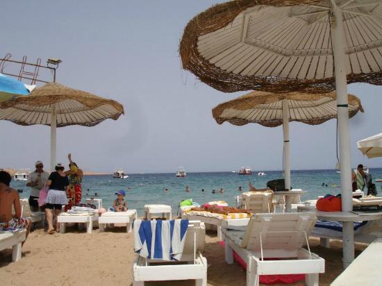 Tropicana Rosetta & Jasmine Club: the beach