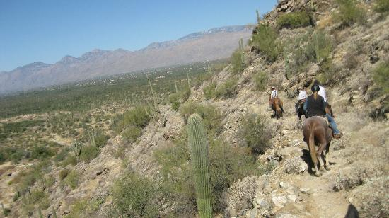 Tanque Verde Ranch: View from the trail