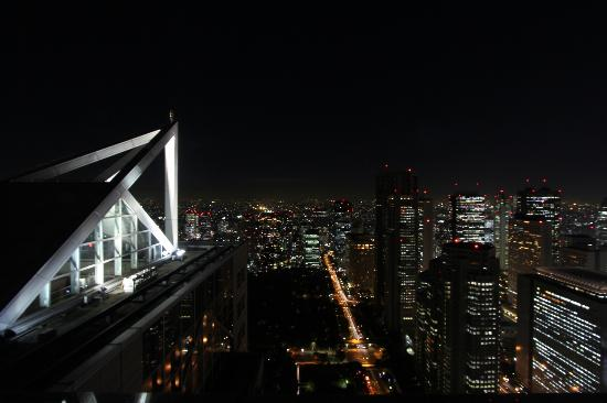 Park Hyatt Tokyo: view from the room - suite 5501 - that is the pool on left
