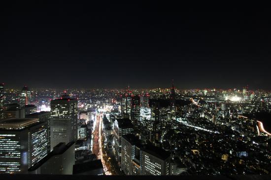 Park Hyatt Tokyo: Incredible view