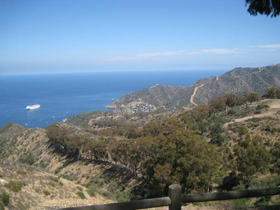 Ultimate Land/Sea Adventure: A distant view of Avalon from the hummer