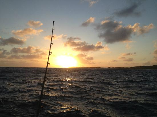 Black Pearl Charters: Sunrise from the Black Pearl