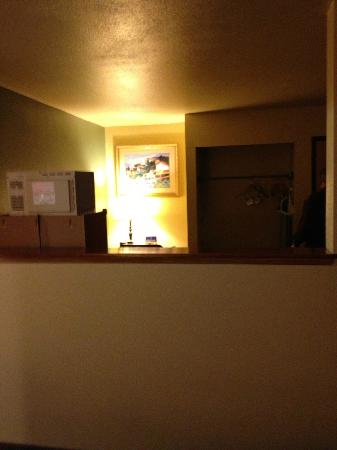 BEST WESTERN PLUS Colony Inn: View from the bed is the back of the microwave and fridge, unpleasant.