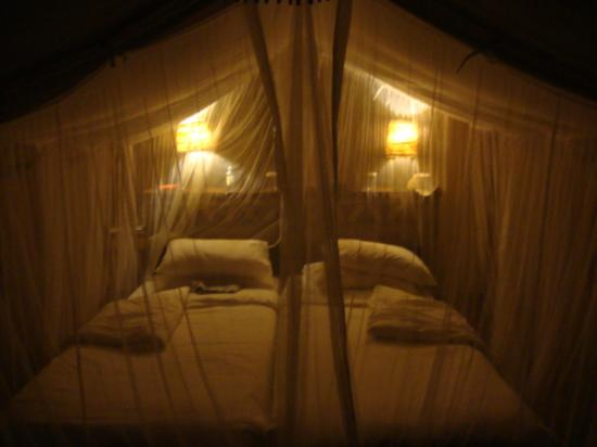 Sarova Mara Game Camp : Tenda 34