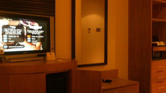 Cork International Hotel: tv area