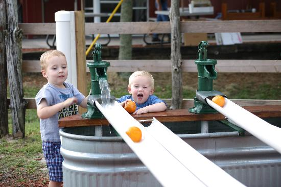Al's Family Farms: All ages enjoy the orange races!