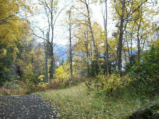 McHugh Creek Recreation Area : McHugh Creek trail above trailhead picnic area 10/6/12