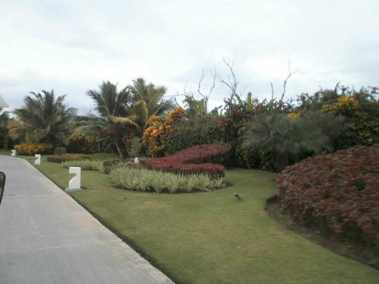 Paradisus Punta Cana Resort: excelentes jardines
