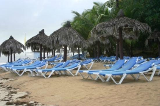 Grand Bahia Principe El Portillo: Beach